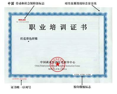 cettic培训证书1