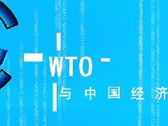 WTO与中国经济-全球化下的中国策略